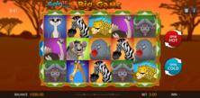 Big Game Spin 16