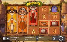 Meet The Meerkats Push