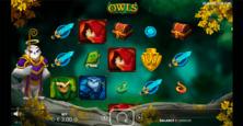 Owls Nolimit